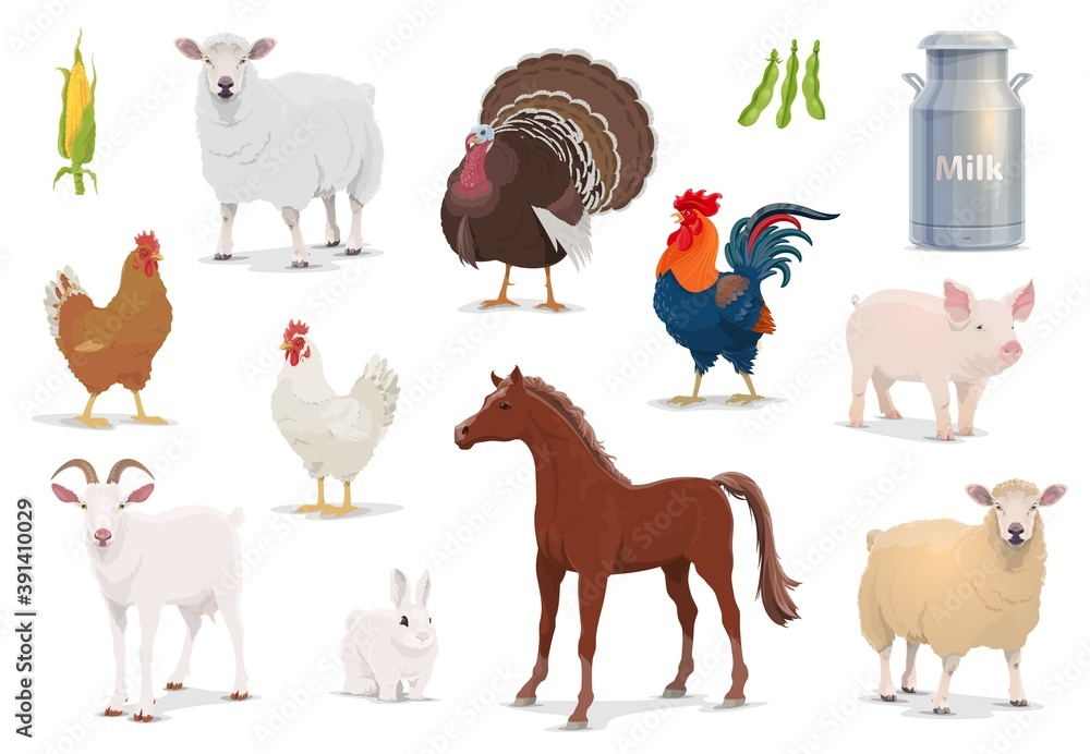 Fototapeta Farm animals cartoon vector sheep, turkey and cock, pig, goat and horse with chicken and rabbit. Corn, milk in tin can and bean pods, farm husbandry production, healthy eco food isolated icons set
