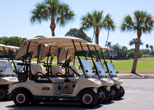 A Row Of Empty Golf Carts With Palm Trees.