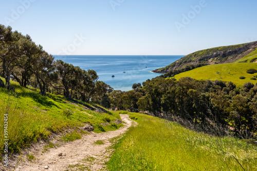 Photo Looking down on Smugglers Cove on Santa Cruz Island, Channel Islands National Pa