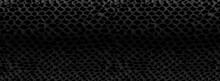 Snake Skin Texture.