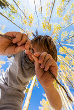 Looking Up At Young Boy Wearing COVID Mask With Autumn Aspens Above