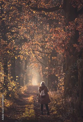 Obraz Jesienny spacer w parku - fototapety do salonu