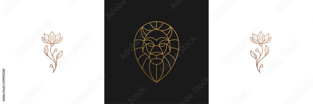 Fototapeta Vector line elegant decoration design elements set - lion head and flowers illustrations minimal linear style