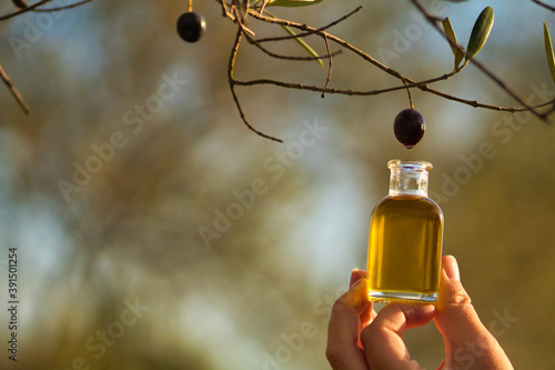 Hand holding glass jar with extra virgin olive oil as if it fell directly from the olive, liquid gold Fototapet