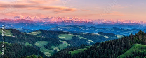Fototapeta Aerial shot of the beautiful meadows and forest by the mountains obraz