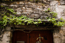 Overgrown Vines Above Wood Door In French Countryside