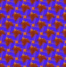Aurumn Seamless Astronira's Pattern With A Maple Leaves In A Bright Translucent Colors