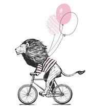 Cool Lion Wearing Stripped T-shirt Rides Bicycle With Balloons Vector Illustration. Vintage Mascot Cute Lion Cycle Bike Isolated On White. Happy Birthday Animal Character Black And White Sketch. Flat