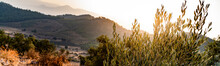 Sunset On A Mountainside Panor...