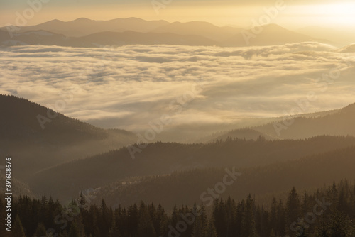 Fototapety, obrazy: Winter in the Ukrainian Carpathian mountains with morning fogs