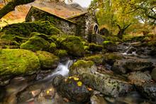 Beautiful Autumn Colours At Th...