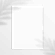 White Vertical Canvas, Hanging...