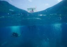 Underwater Scuba Divers , Cari...