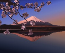 Japanese Landscape, A Mountain With A Snowy Peak, Reflected In The Lake At Dawn, And A Branch Of Flowering Cherry Trees.