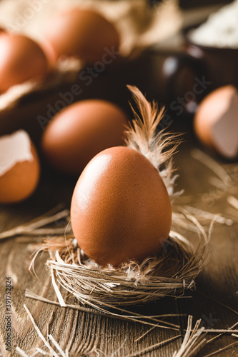 Canvas Print Brown egg in a nest with a chicken feather. Food art