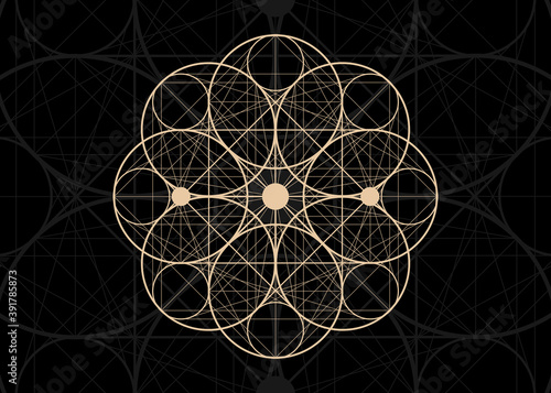 Seed of life symbol Sacred Geometry Canvas