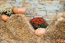 Autumn Decor With Natural Straw Bale, Pumpkins, Flowers. Harvest And Garden Outdoor Decorations For Halloween, Thanksgiving, Autumn Season Still Life. Fall Styled Composition.