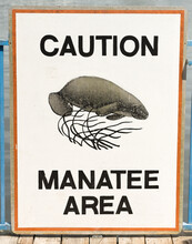 Sign That Says Caution, Manatee Area, On A Dock.