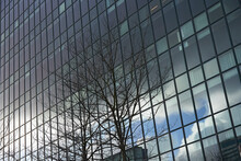 Reflective Glass Windows On The Facade Of A High Rise Office Building