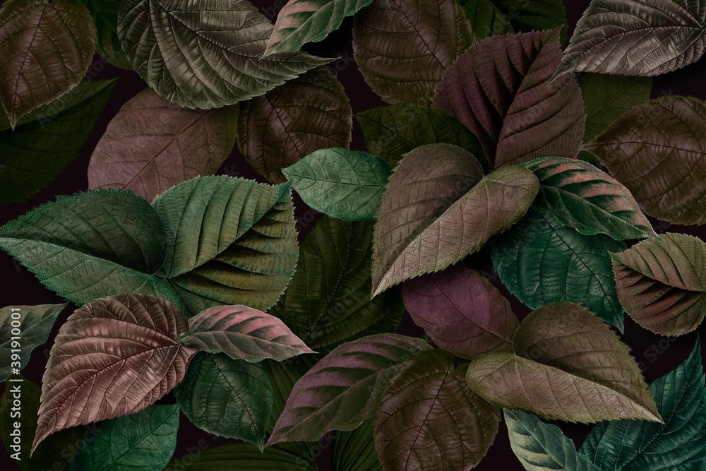 Fototapeta Metallic green and purple leaves textured background