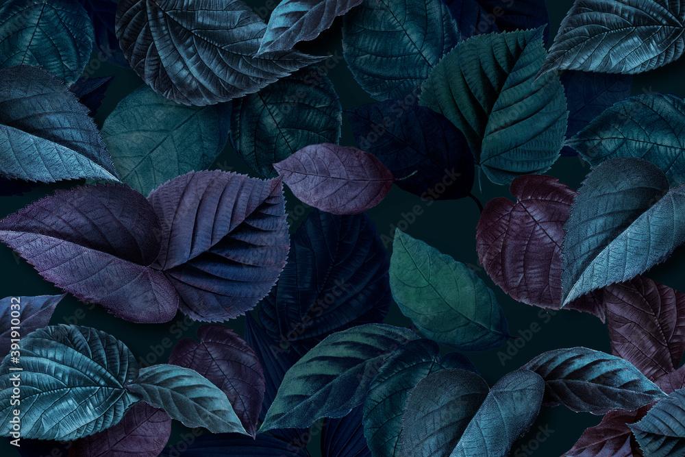 Fototapeta Bluish plant leaves textured background