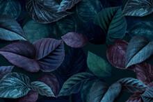 Bluish Plant Leaves Textured Background