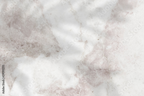 Carta da parati Shadow of leaves on a marble textured