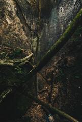 山の岩の間から見上げた風景