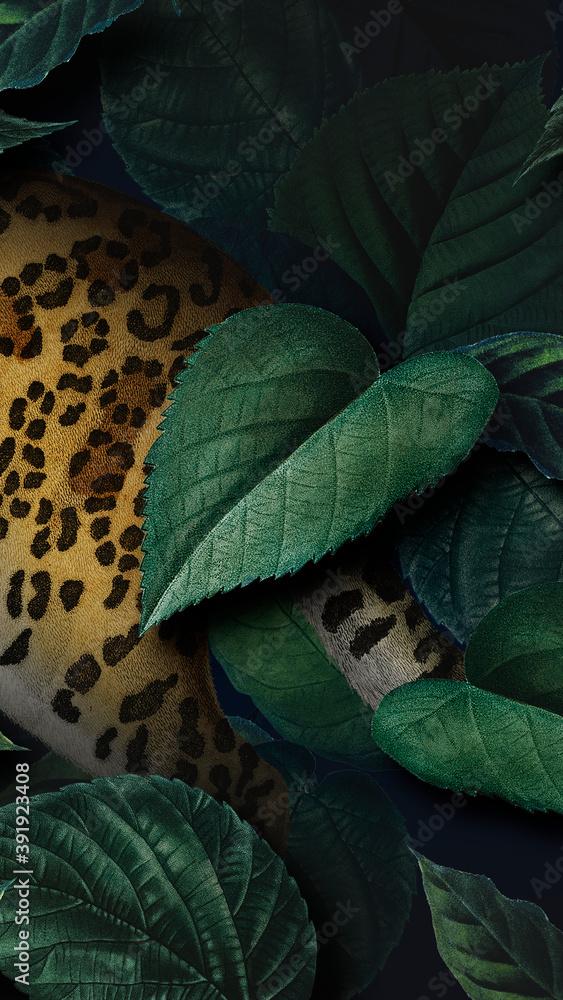 Fototapeta Cheetah in the wild