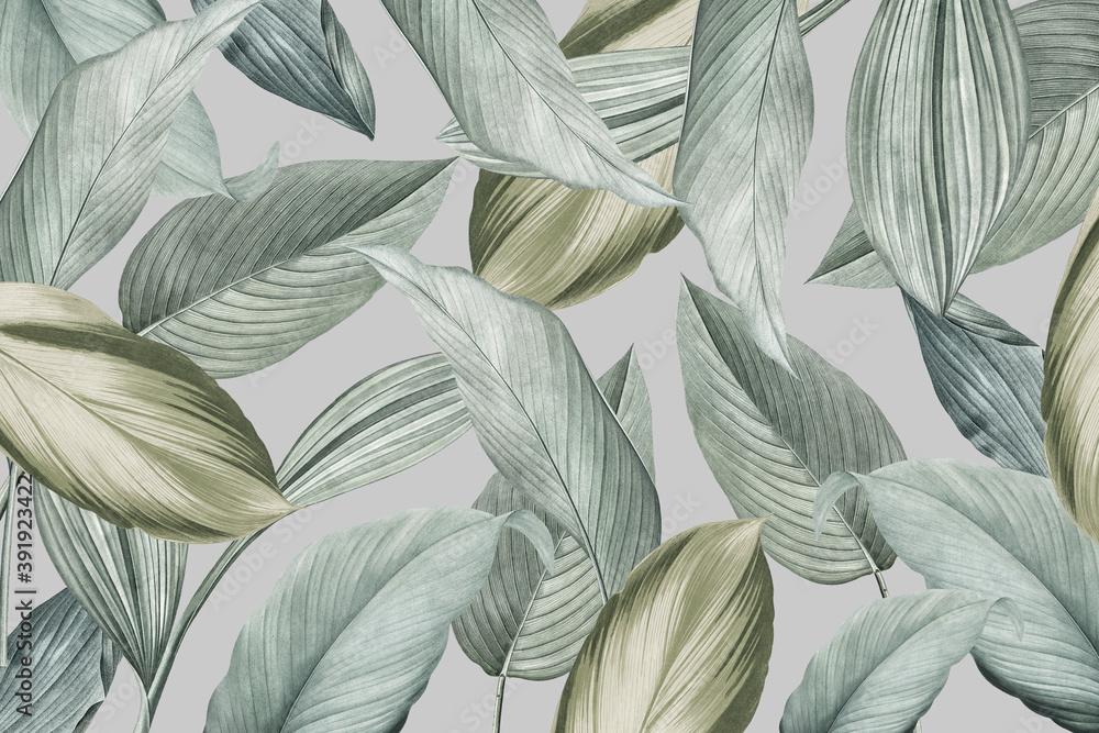 Fototapeta Tropical foliage background