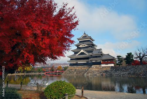 秋の松本城 Canvas