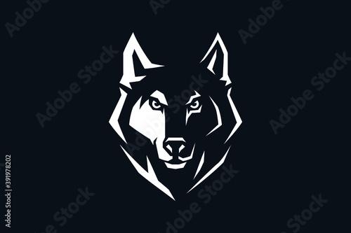 Foto Edgy Design Head of Aggressive Wolf