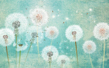 3d Picture Dandelions On A Green Background