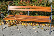 Park Bench In Autumn Time
