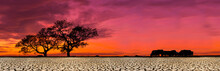 African Safari Animal Savannah Silhouette Sunset Background Landscape Scene, With Dry, Cracked Soil.