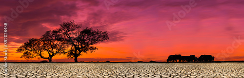 African safari animal savannah silhouette sunset background landscape scene, With dry, cracked soil.