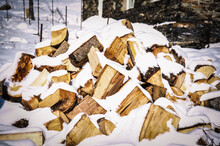 Wood For Firewood Under Snow I...