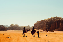 Tourists Ride Camels With A Be...