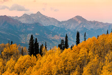 Scenic View Of Autumn Trees Ag...
