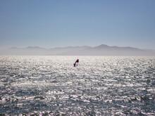 Lone Windsurfer Sailing Across San Francisco Bay Under Blue Skis