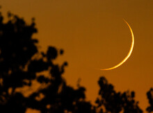 Waxing Crescent Moon Sets Over Trees In Western Forest Fire Color Sky