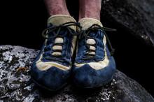 Cat Feet Of A Climber