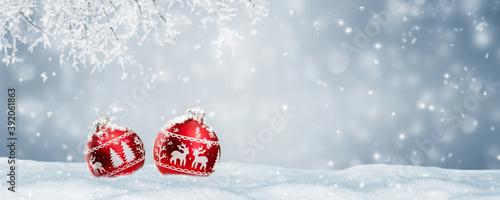 Fototapeta idyllische winterlandschaft mit baumschmuck im schnee obraz