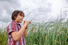 A Boy Stands By Tall Grass On ...