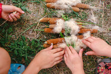 Close-up Of Children Collecting Bundles Of Fluffy Cattails Together