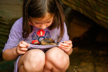 A Little Girl With Dirty Knees Holds A Small Turtle On Her Lap