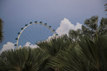 Ferris Wheel Seen From Marina Bay Gardens In Singapore