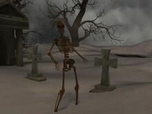 Walking Skeleton In The Spooky...