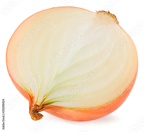 half of onion isolated on white background Canvas