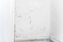 Peeling Wall Paint, Moist Damp...